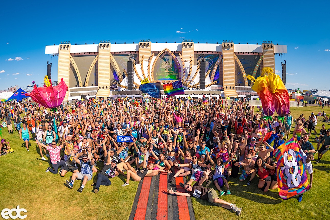 Cosmic Meadow  - Photo Credit: Insomniac Events