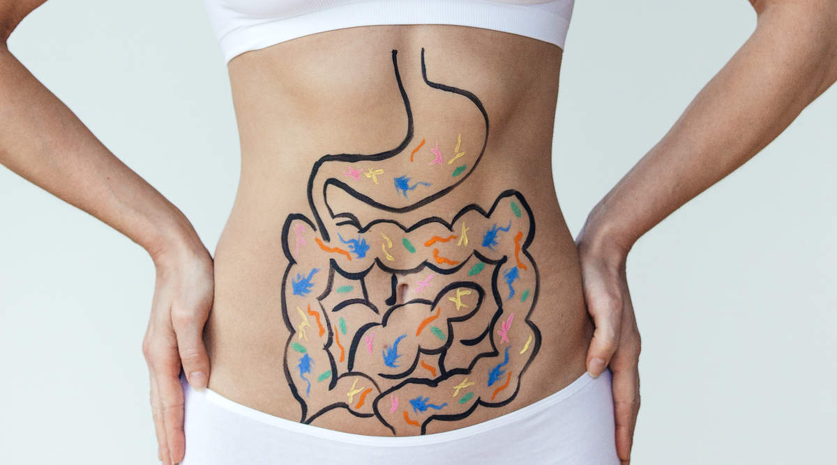 gut-digestion-stomach-gettyimages-892955888.jpg