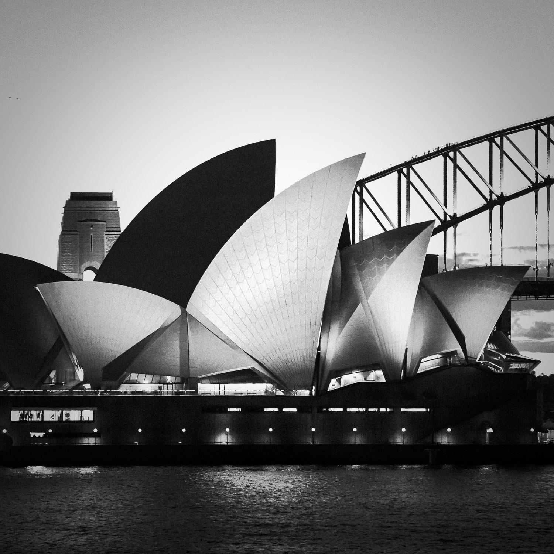 Nautilus [2014] Sydney, NSW, Australia