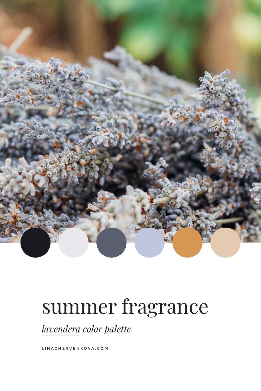 lavendera-color-palette-1.jpg
