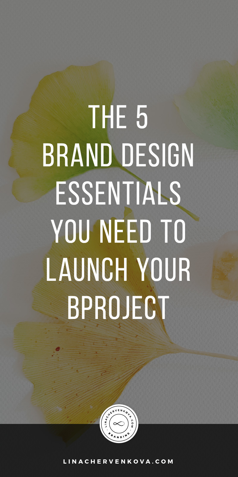 The-5-Brand-Design-Essentials-You-Need-to-Launch-Your-Project---pin5.jpg