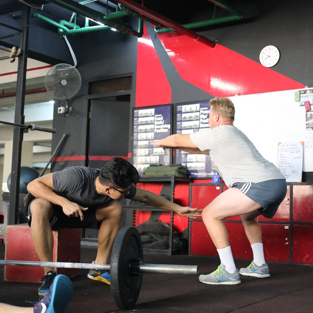 5.  WHAT ARE THE MOVEMENTS?    Loaded  CARRY ,  SQUAT ,  HINGE ,  PULL , and,  PUSH . Learn the fundamental human movements that make our programs accessible to  EVERYONE  and  ANYONE !  <  click for more  >