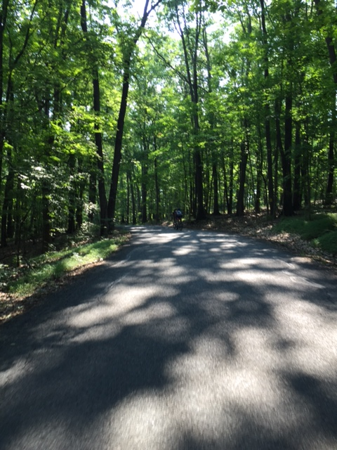 One the shaded roads north of Lake Nockamixon between the first and second rest stop. The shade and remoteness of this area was particularly enjoyable. Photo courtesy Mike McHugh.