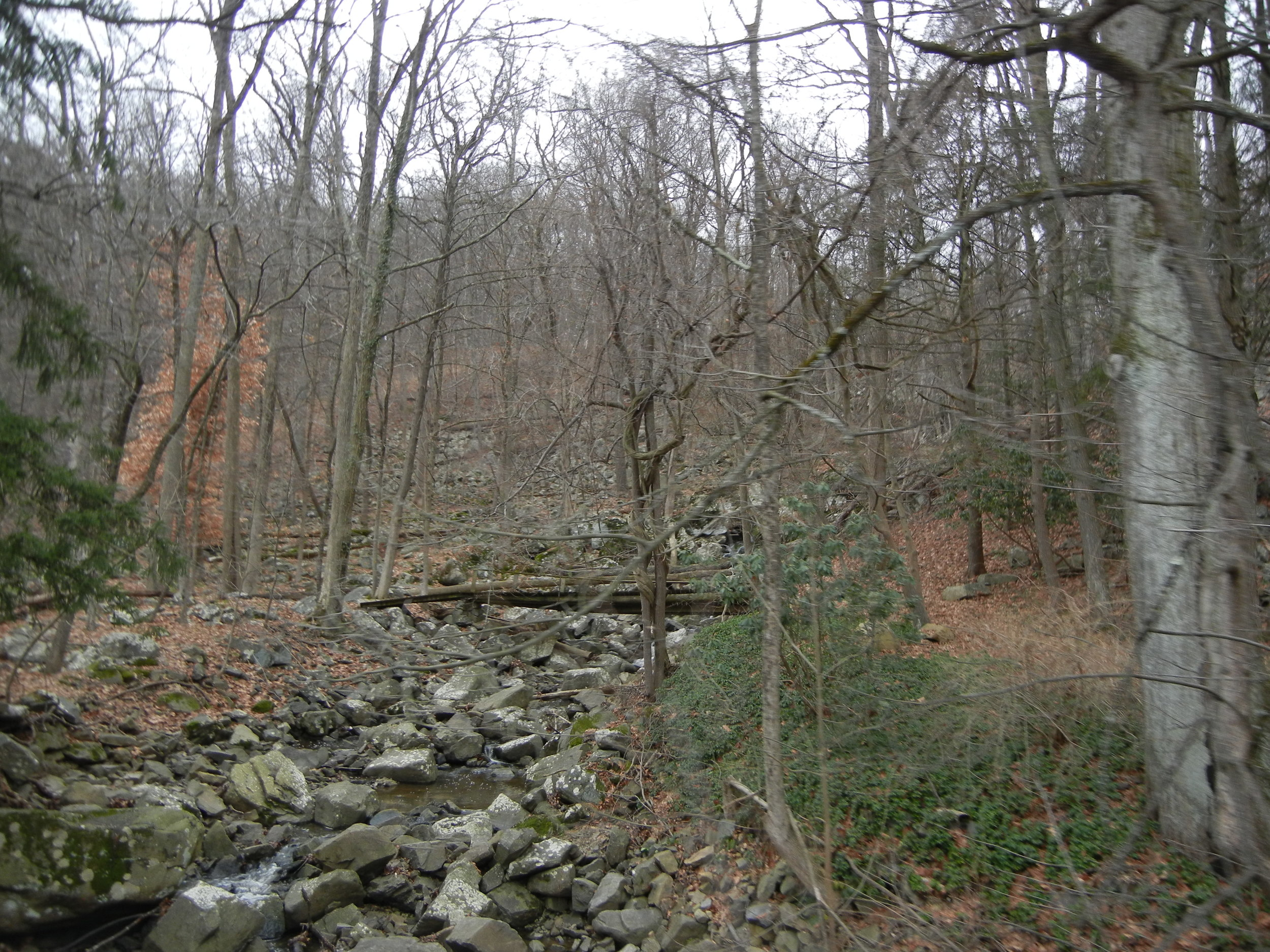 A view of Slobbery Run from Point Pleasant Pike.