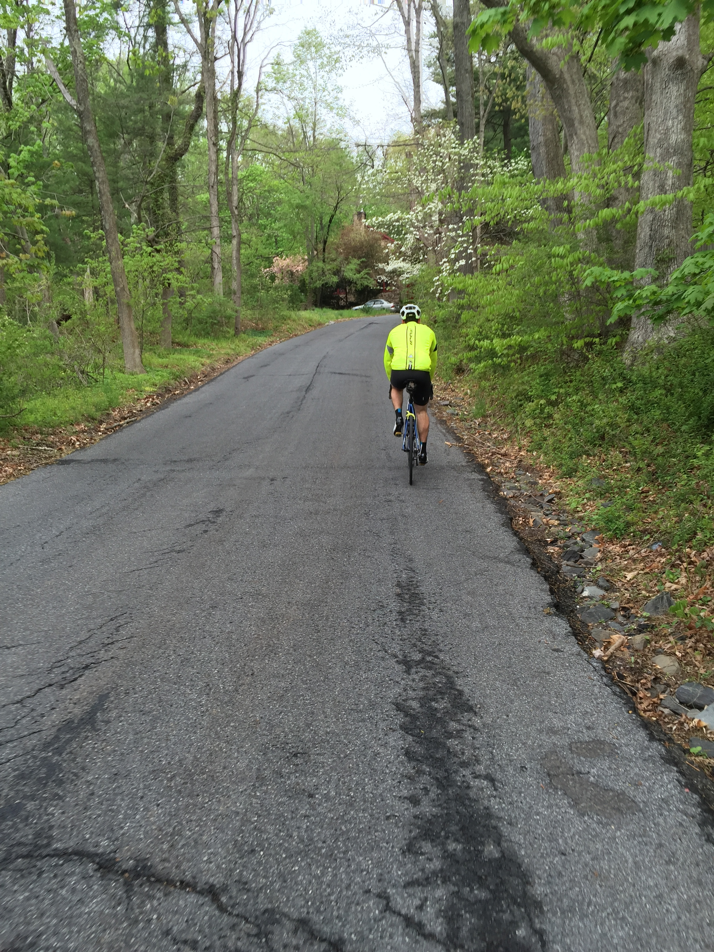 (Dis) Comfort Road in Solebury, PA, welcomed riders to the Fleche Buffoon.