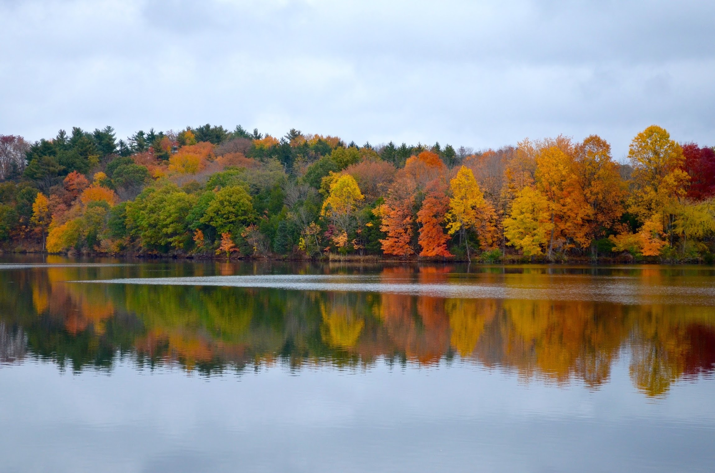 Colors are reflected at Green Lane Reservoir in Montgomery County. The ride passes through the park after Eichele Hill climb. Photo courtesy Janine Carroll.