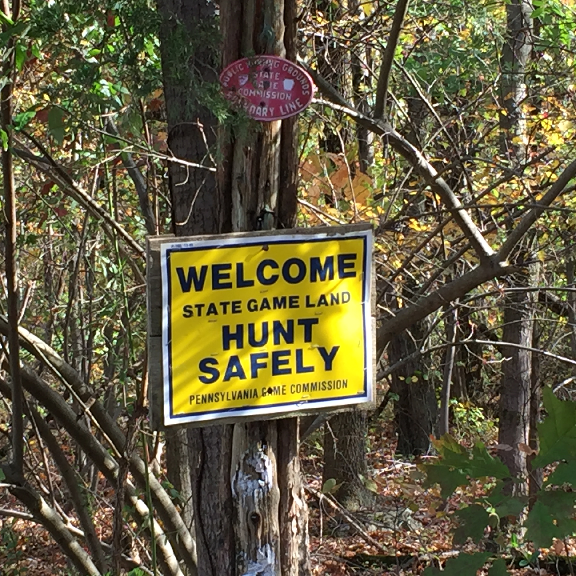 Around northern Bucks County, riders will notice these signs coinciding with quiet roads.