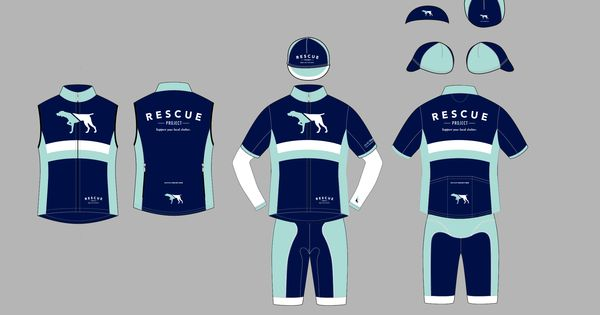 The Rescue Project kit is different from year to year. This is not what the 2017 kit will look like, though it is proof that they can design an attractive kit.