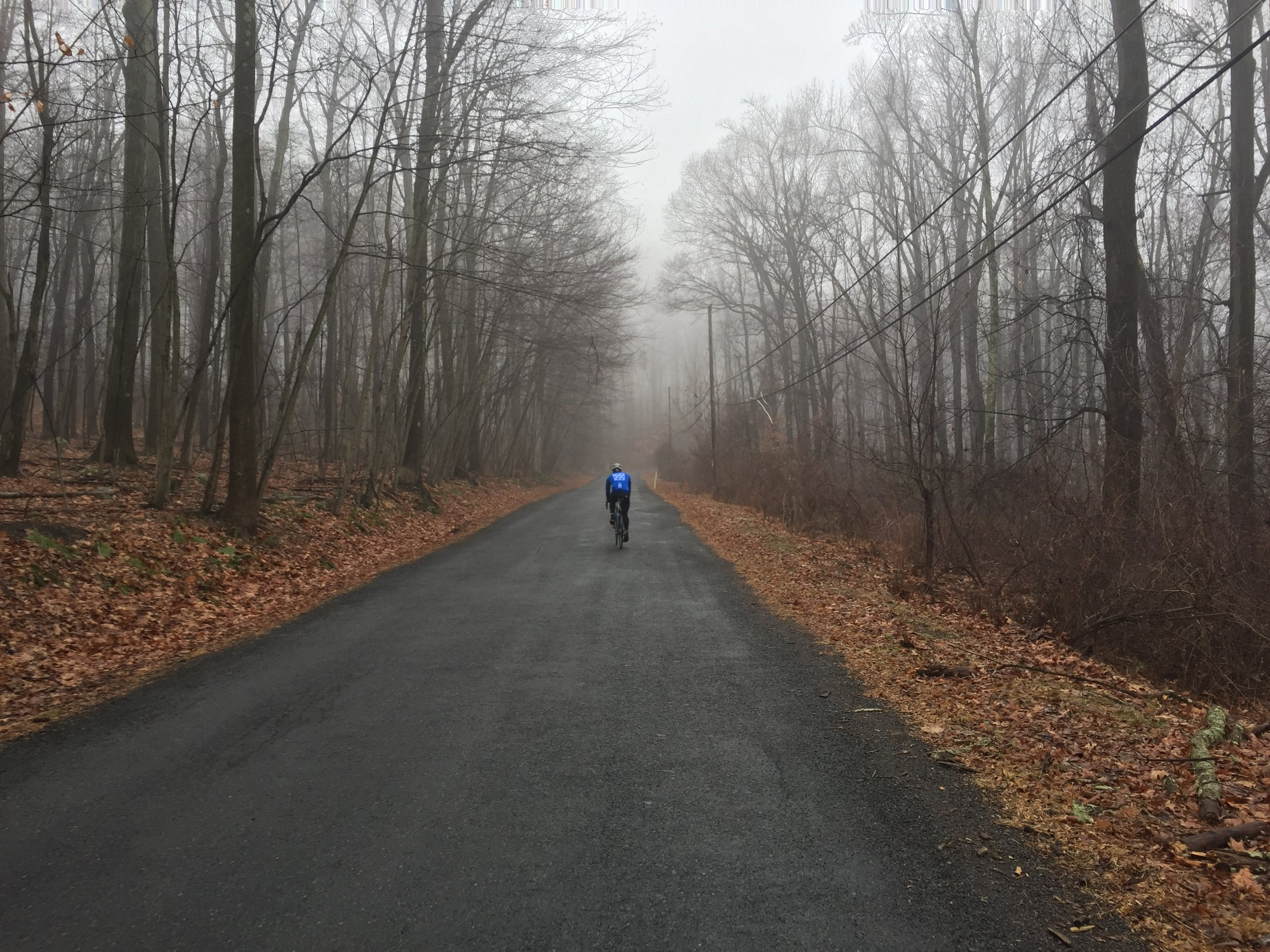 Mike made strong work of Dogwood Lane climb.