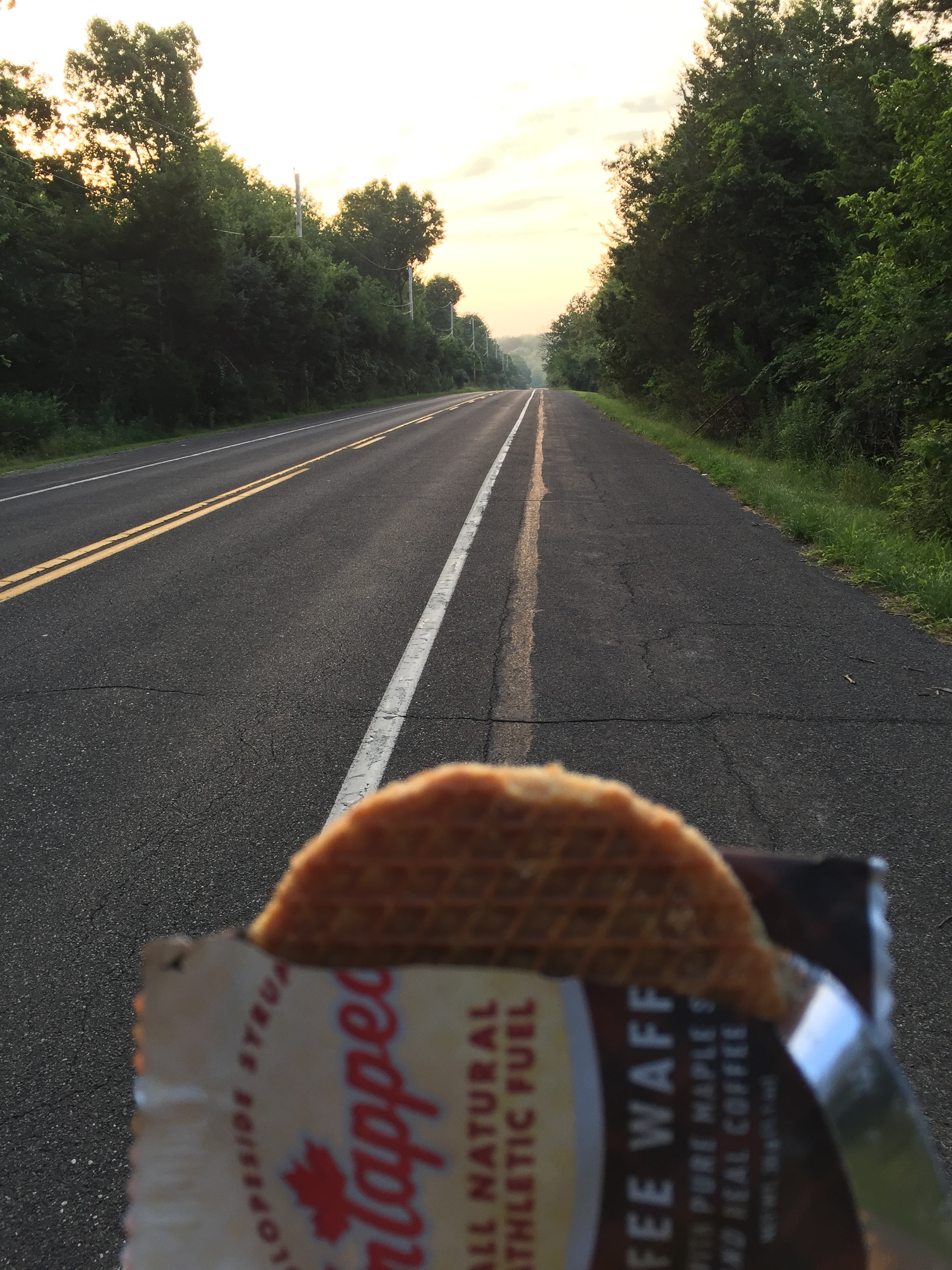 Hail the sunshine twenty minutes after sunrise with an Untapped Coffee Waffle. Large amounts of the road around Lake Nockamixon feature a wide shoulder such as this. The shoulder quality has been steadily declining over the years, so be prepared for deviations in the ride line.