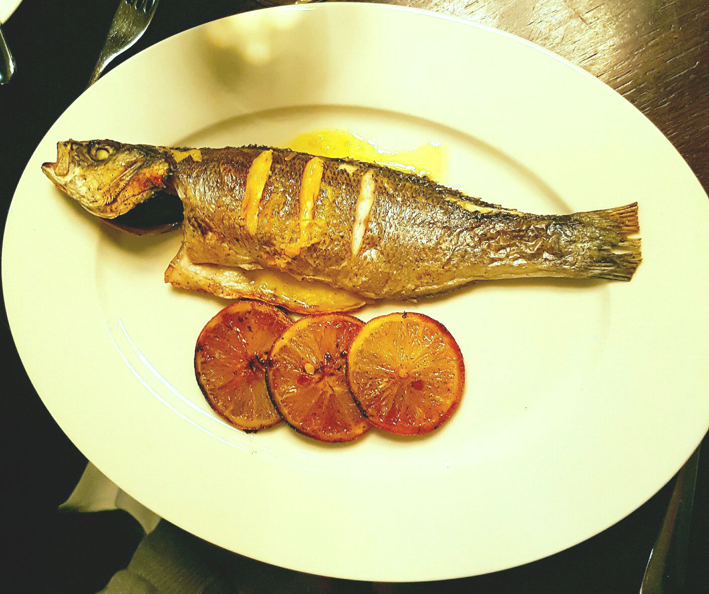 Fish main course - Hunter 486 review