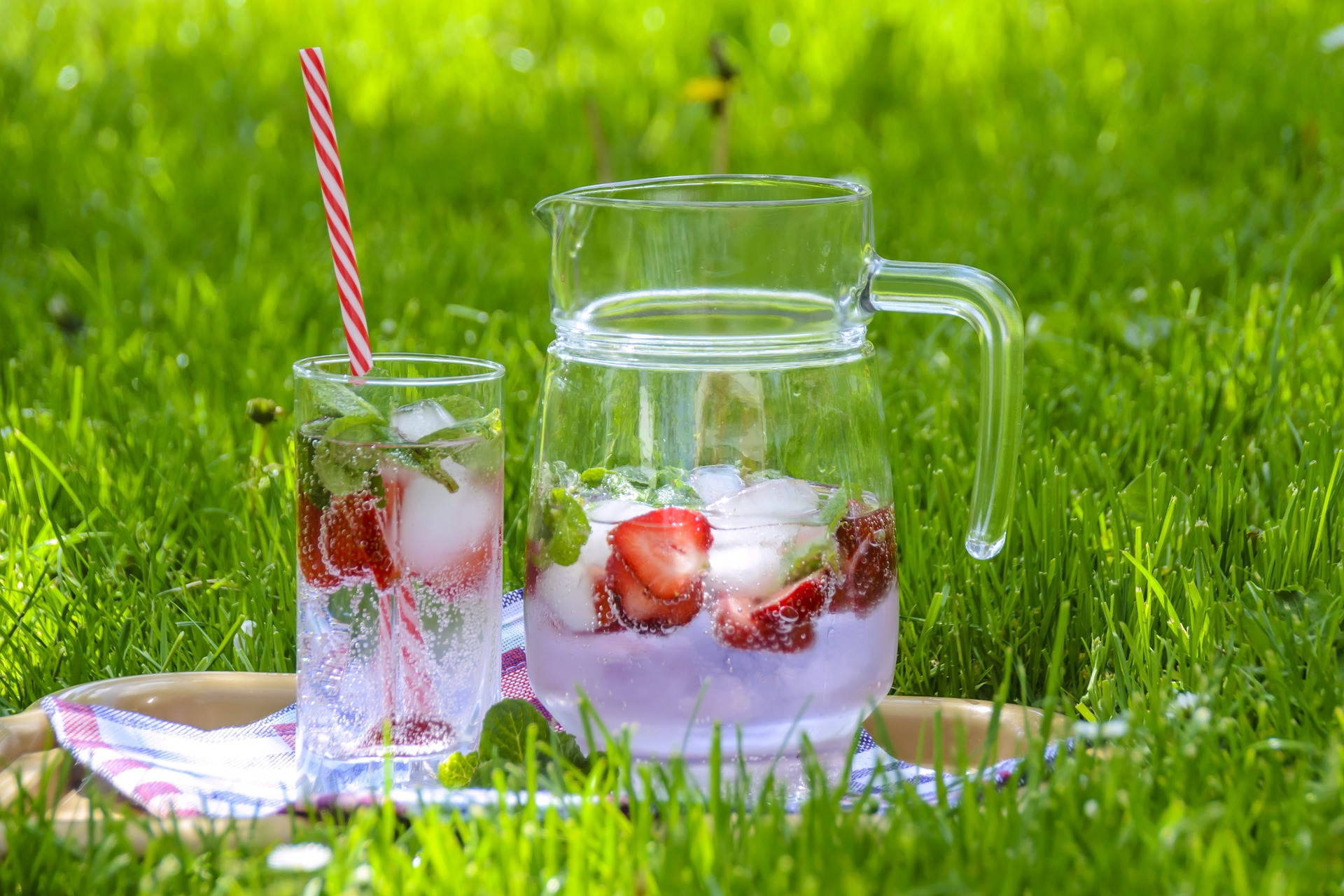 Foodie must-haves for your picnic this Summer