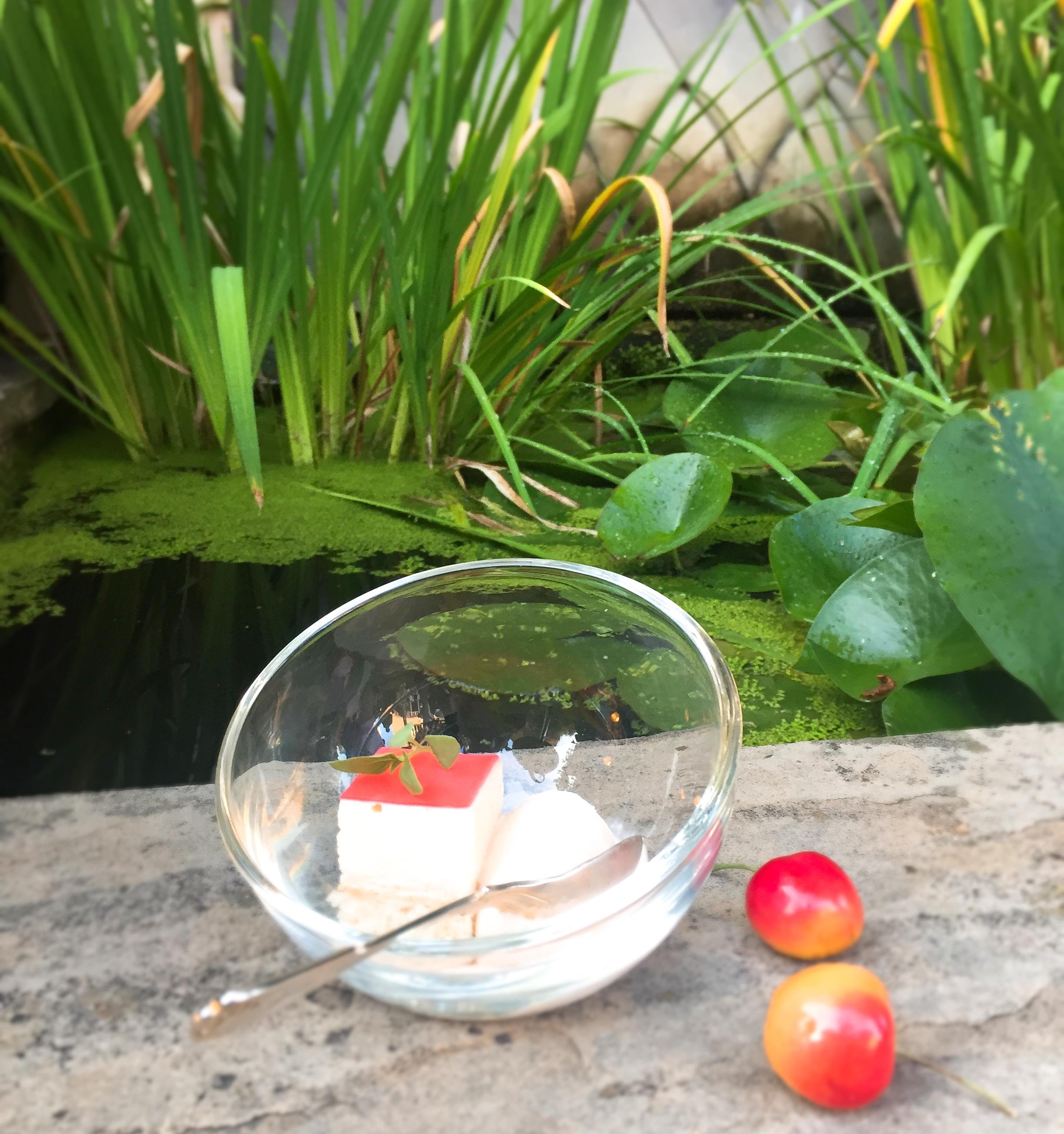 Rainier Cherry sorbet