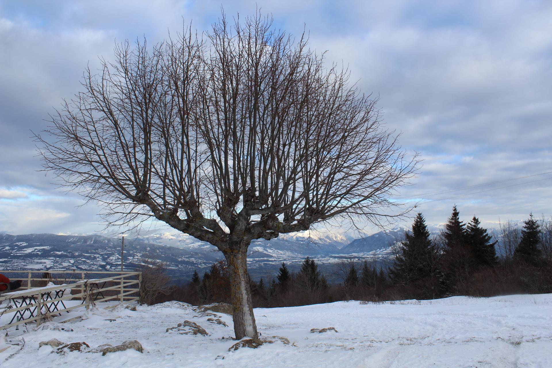 Switzerland - Travel Highlights