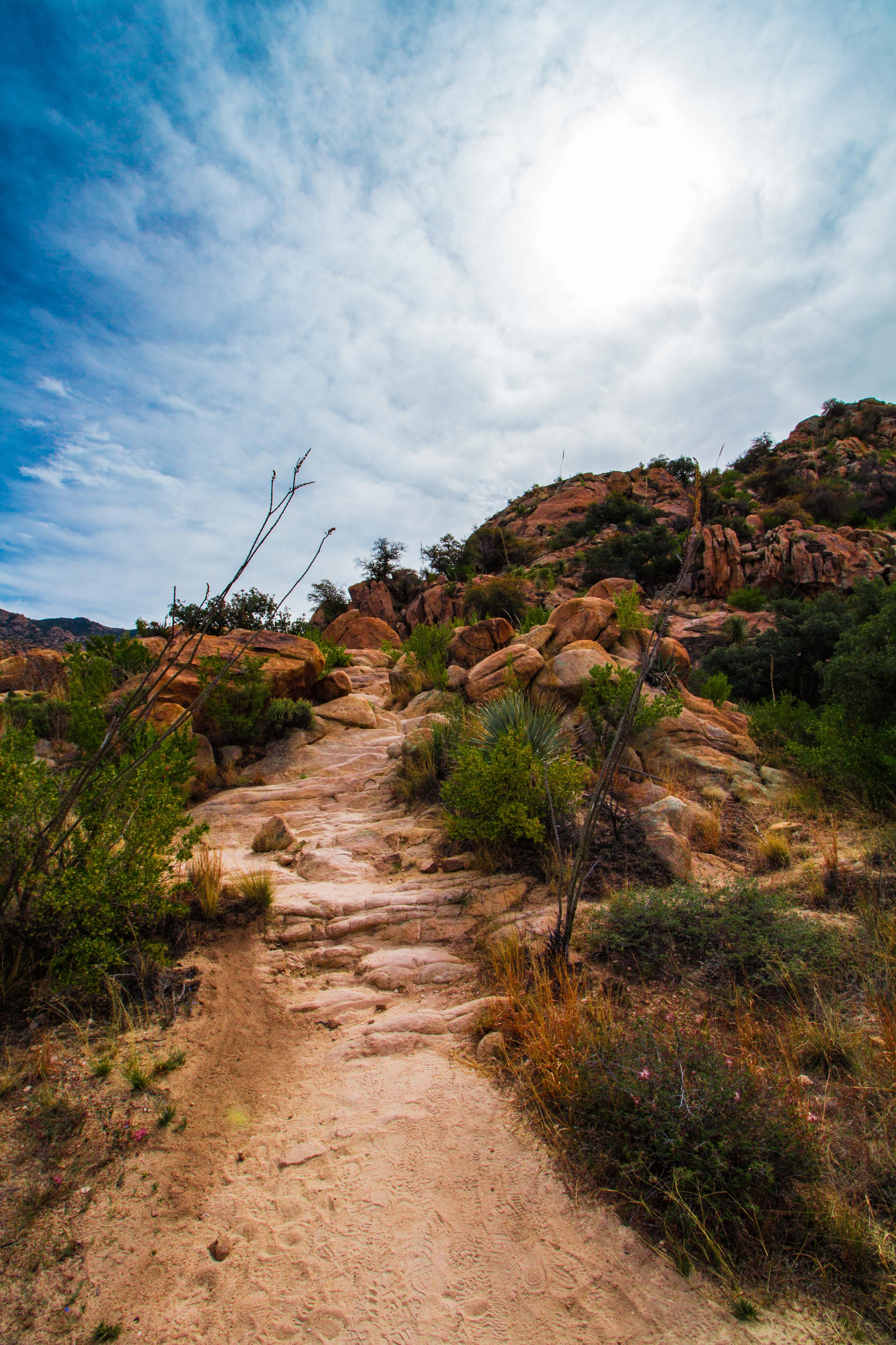 Montrose Pool Trail, Tucson, Arizona
