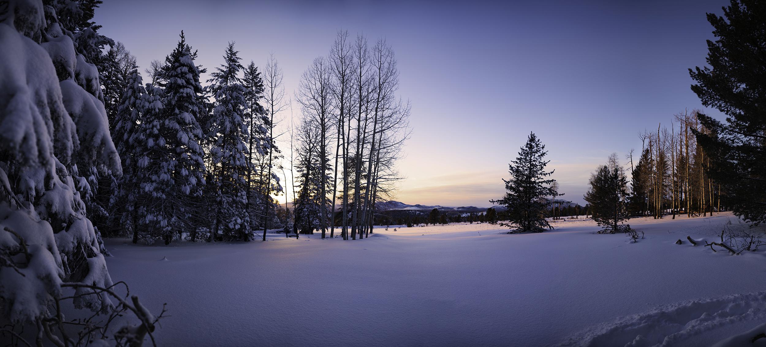 Winter Pano_smalls.jpg