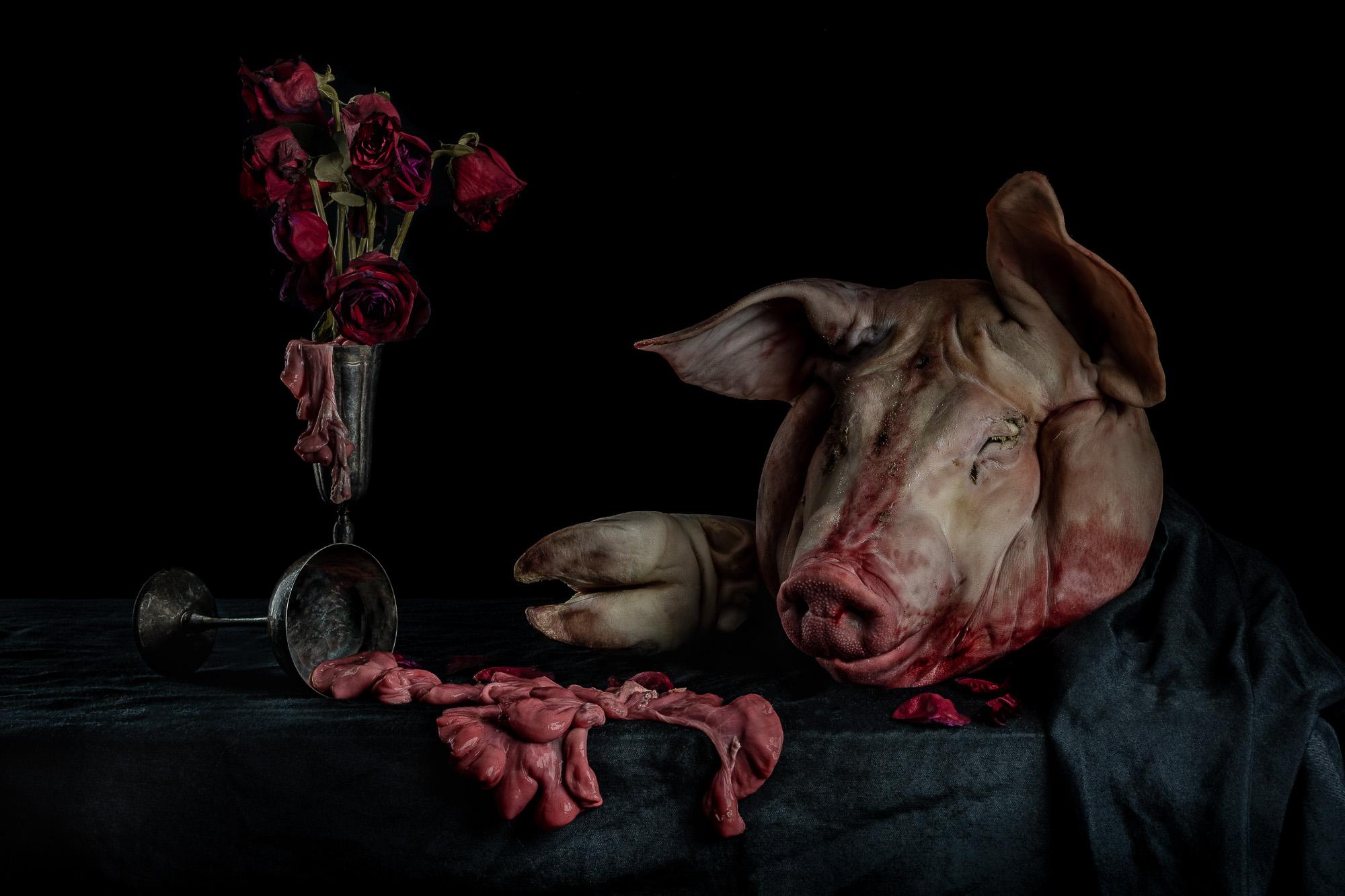 neal-auch-still-life-with-pig-head-2.jpg