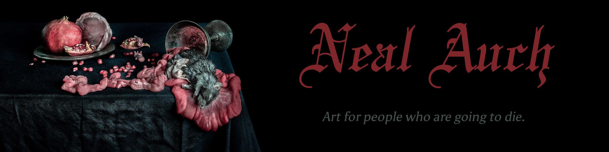 neal-auch-online-store-banner.jpg