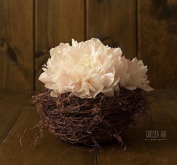 EE_Floral_Design_01.jpg