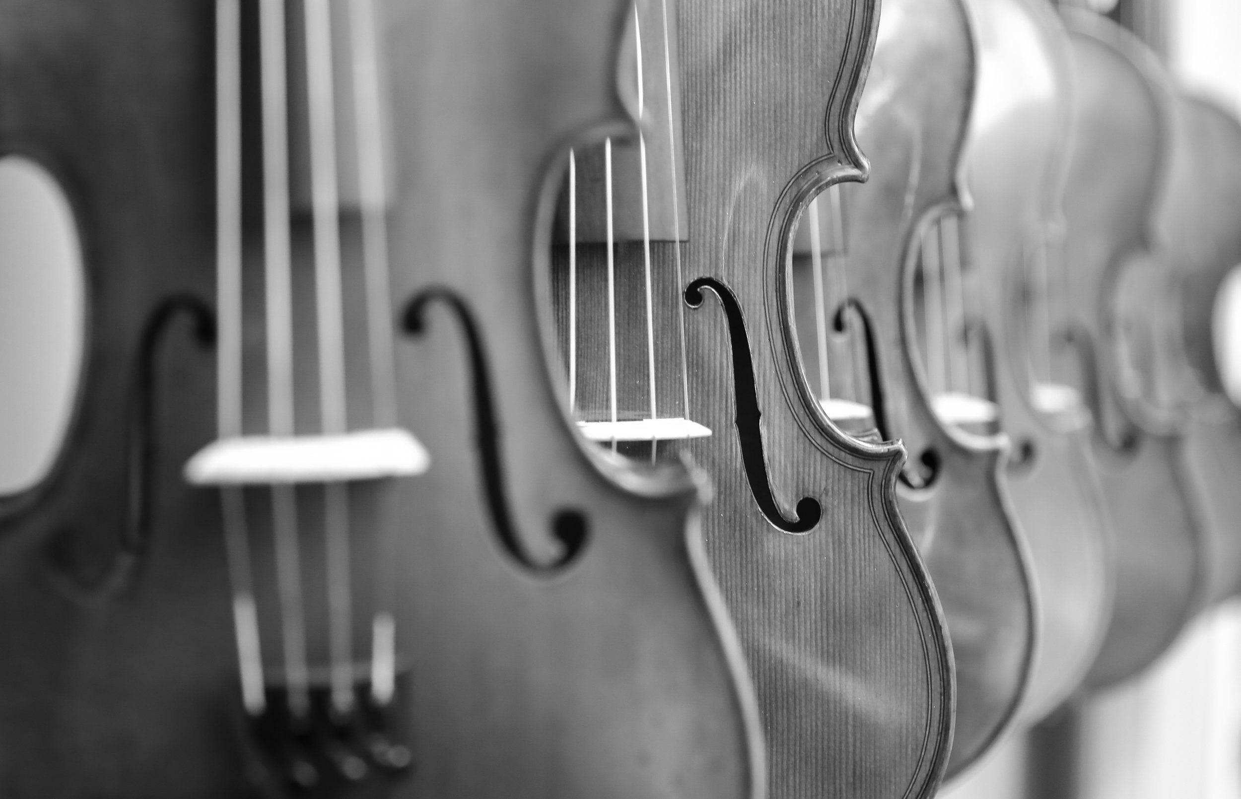 Black and white, violin close up.jpg