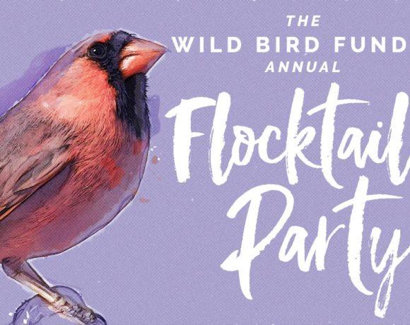 wbf-flocktail-580x460.jpg
