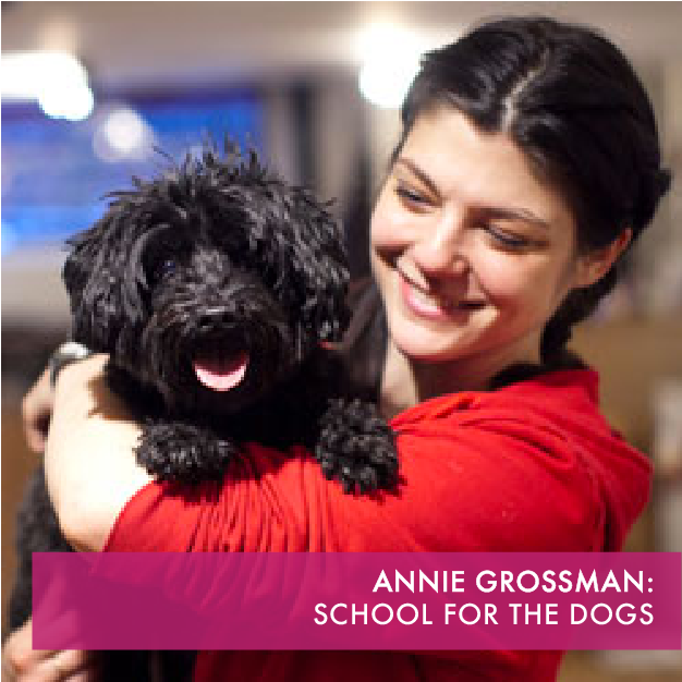 Teaching your dog doesn't have to be a chore at School for the Dogs.  Using humane training methods since 2011, our Certified Trainers will help you change your dog's behavior.