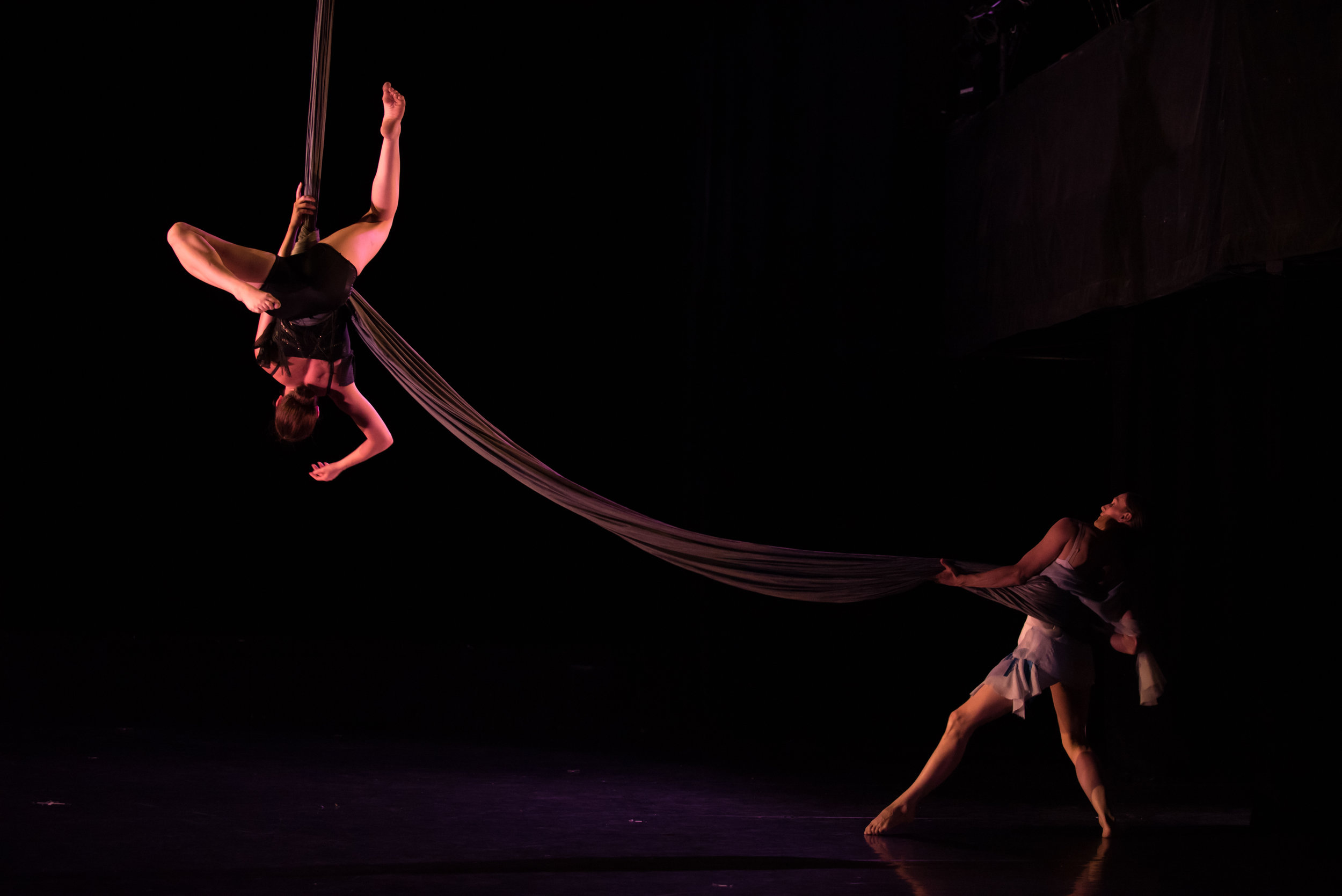 AERIAL DANCE CHICAGO. Photo by Eddie Eng.