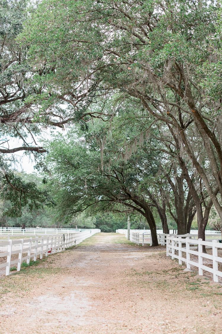 lange-farm-florida-wedding-bridal-musings-kara-ricky-2.jpg