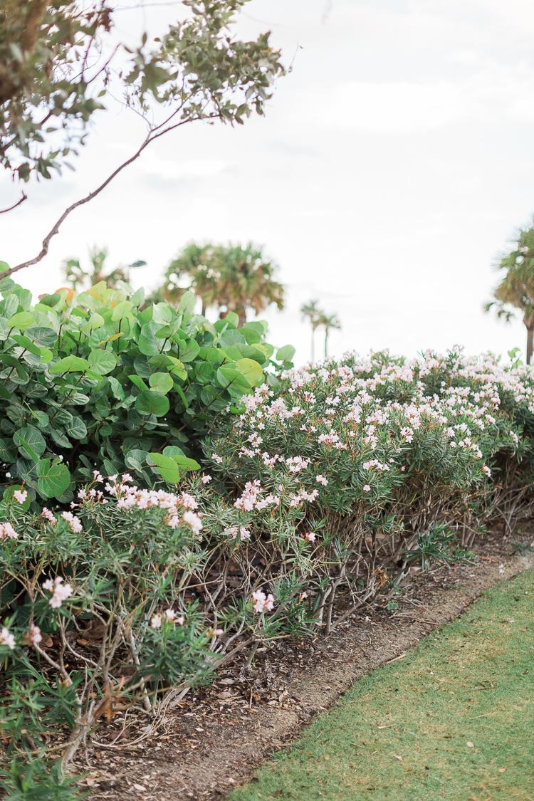 clearwater-beach-florida-fine-art-beach-engagement-lauren-galloway-photography-1.jpg
