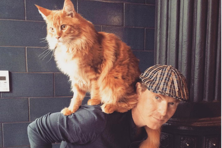 Chef Bobby Flay and his Instagram-famous cat, Nacho, have rented out their former Chelsea digs.