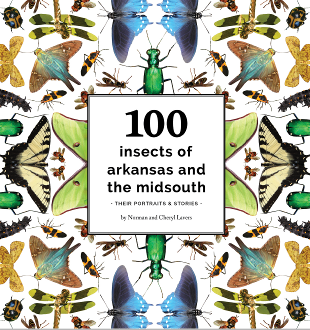 100 Insects of Arkansas Cover.PNG