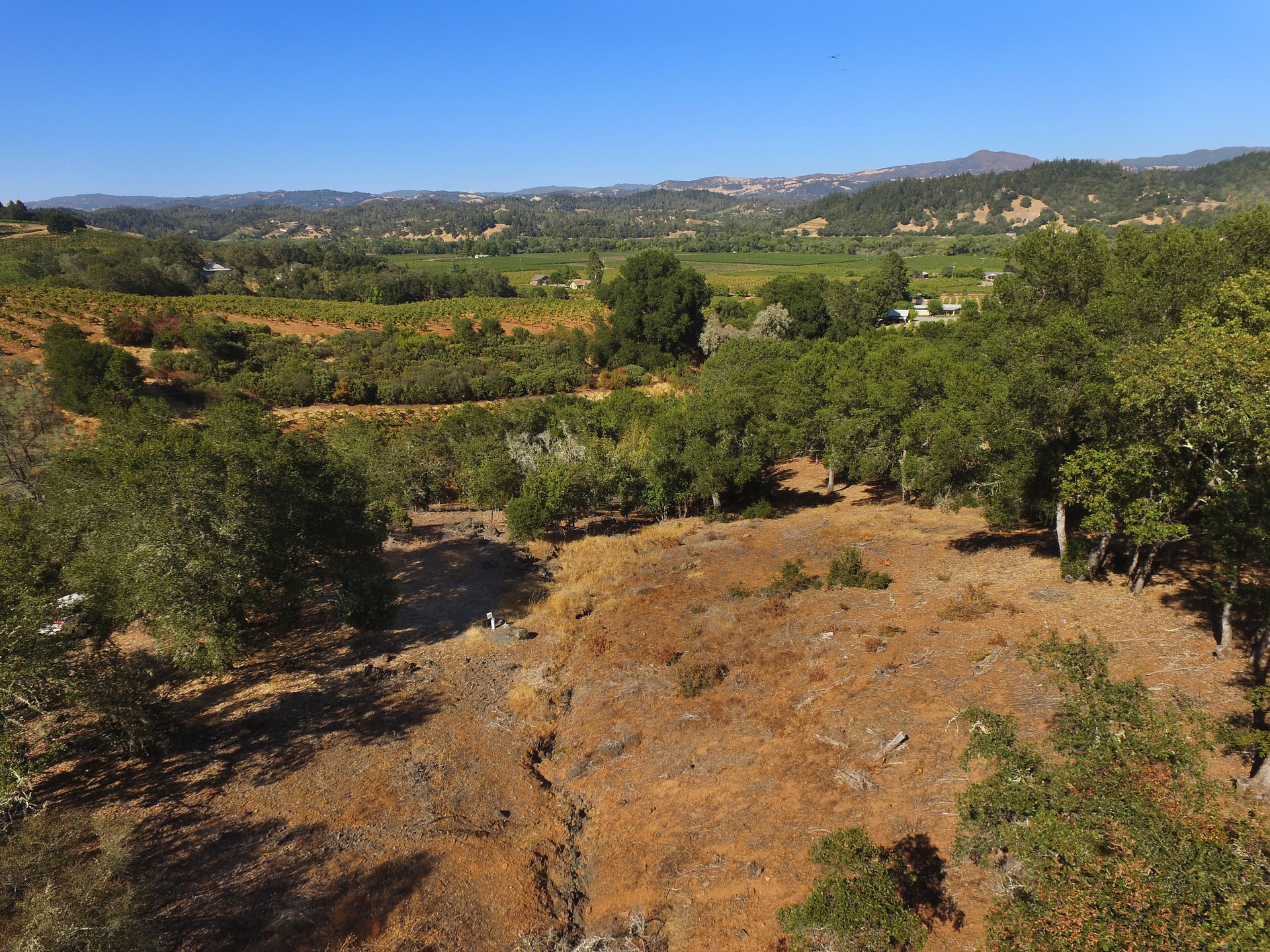 Great location for vineyard views and to build your wine country home. This 2-acre parcel offers a gentle downslope for building a lovely home in the heart of Dry Creek Valley. This gem is one of the last undeveloped small acreages left in Healdsburg.