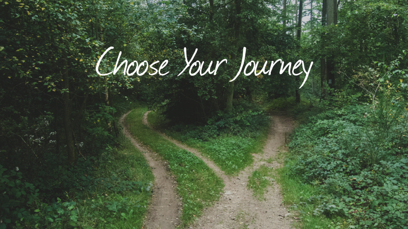 Problem 2 - Choose Your Journey