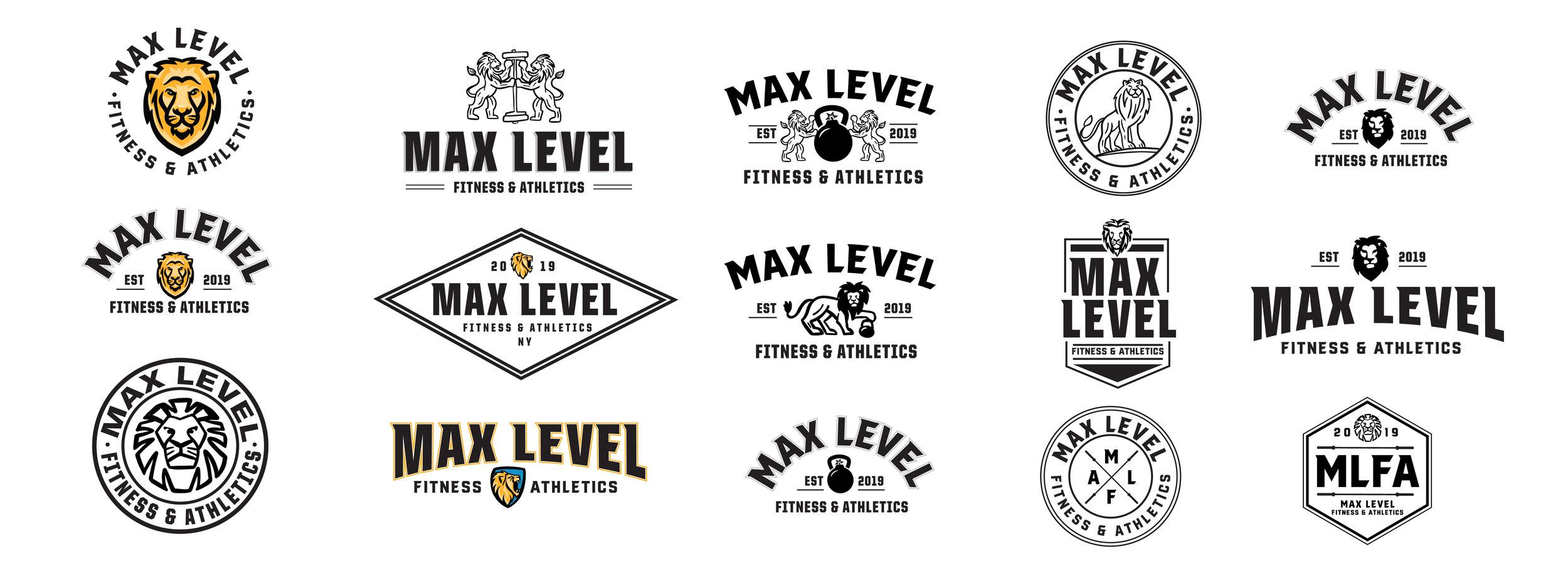 MLFA_logo.jpg