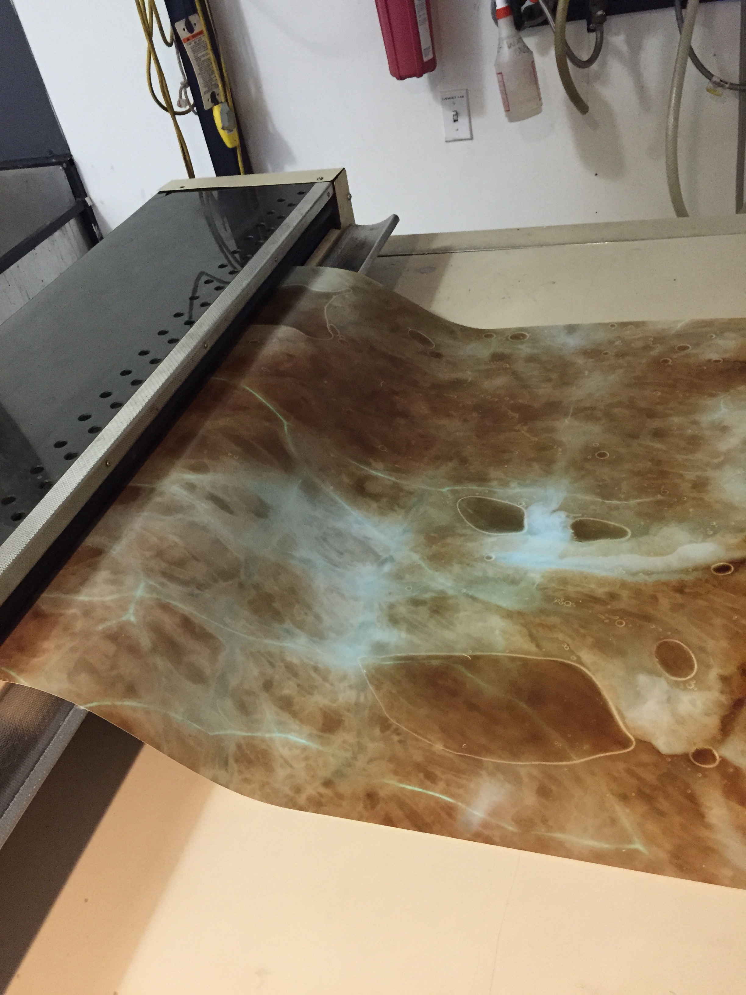 The resulting print from the above chicken skin above