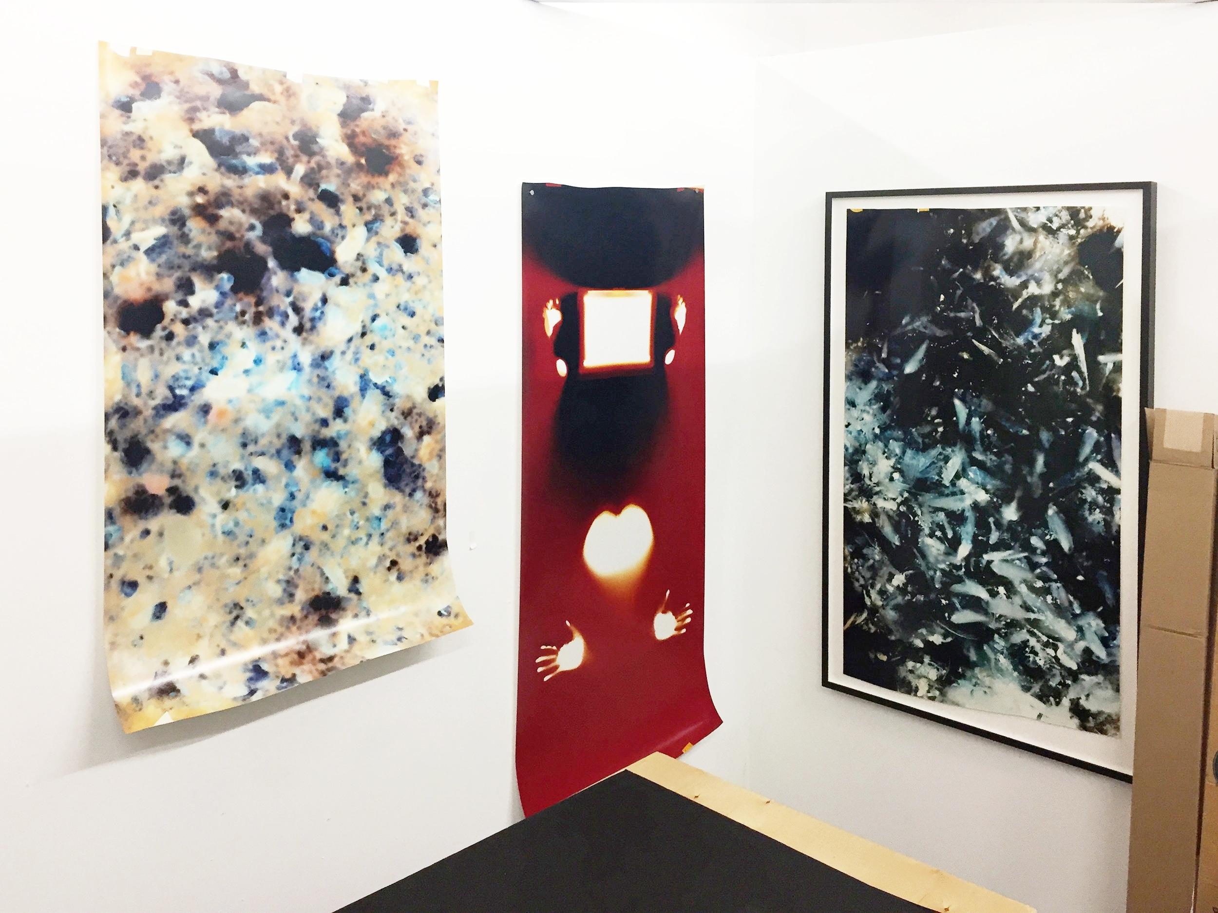 Johnna Arnold studio 2016
