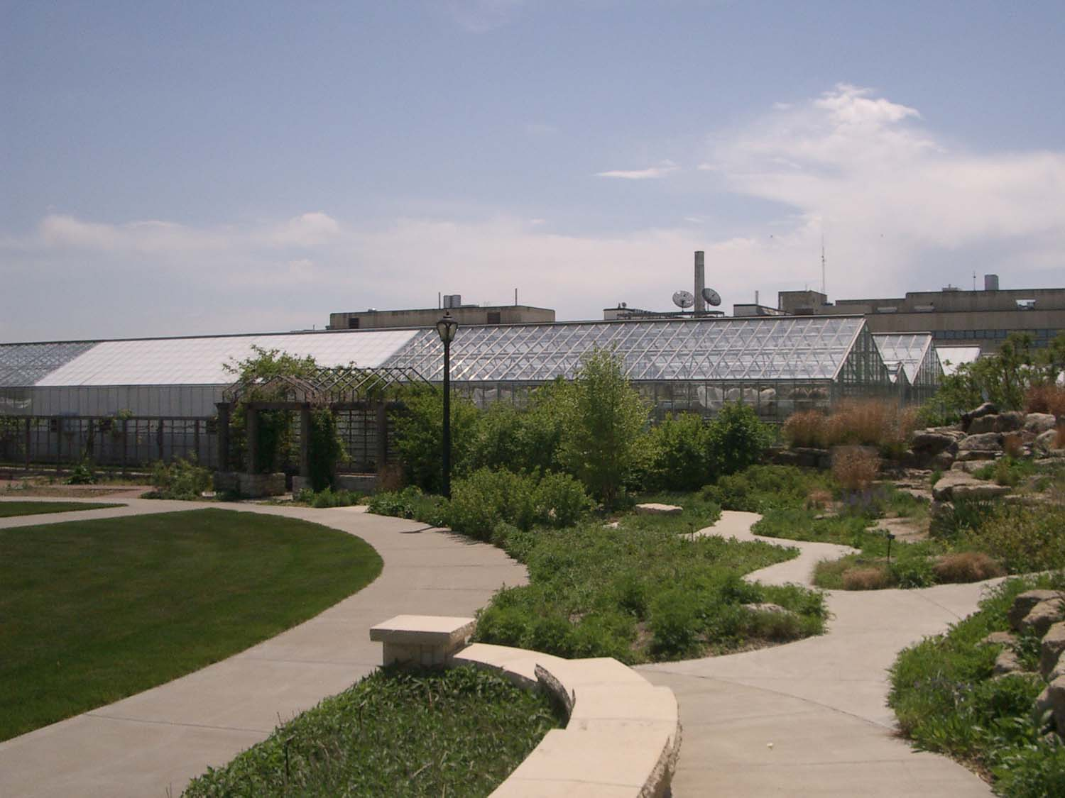 KSU greenhouse 05 06 (2).JPG