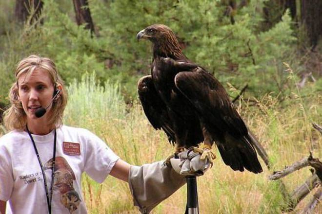 "Naming opportunities often make for extremely engaging auction lots, especially with a program as beloved as the High Desert Museum's ""Raptors in Flight""."