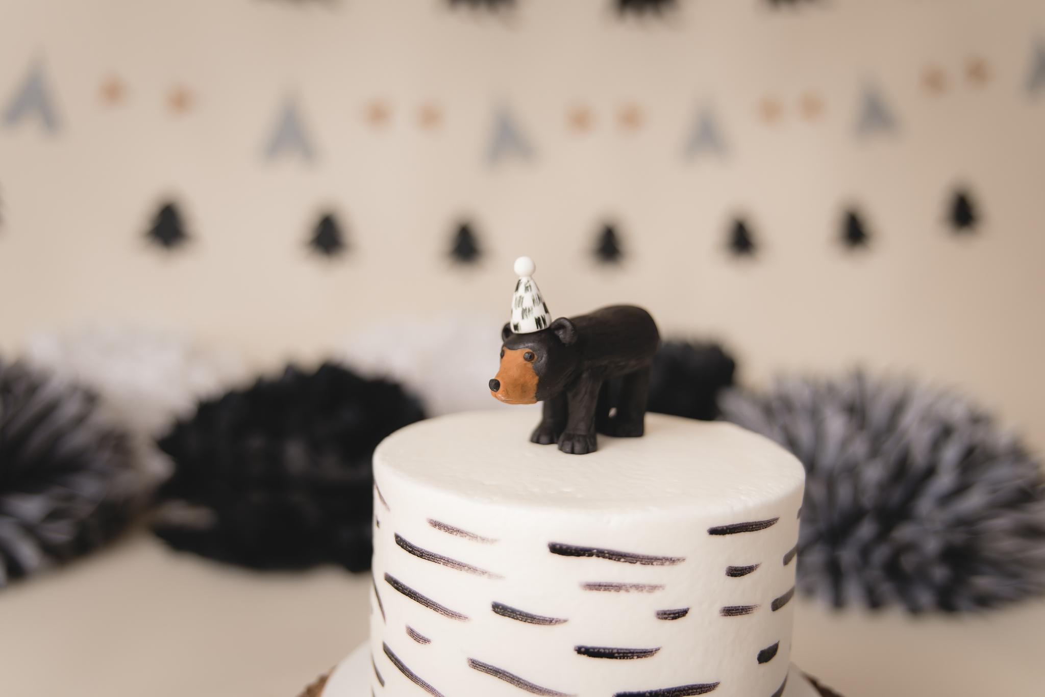 Buffalo Cake Smash