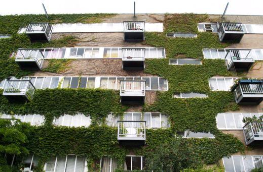 Green facade today