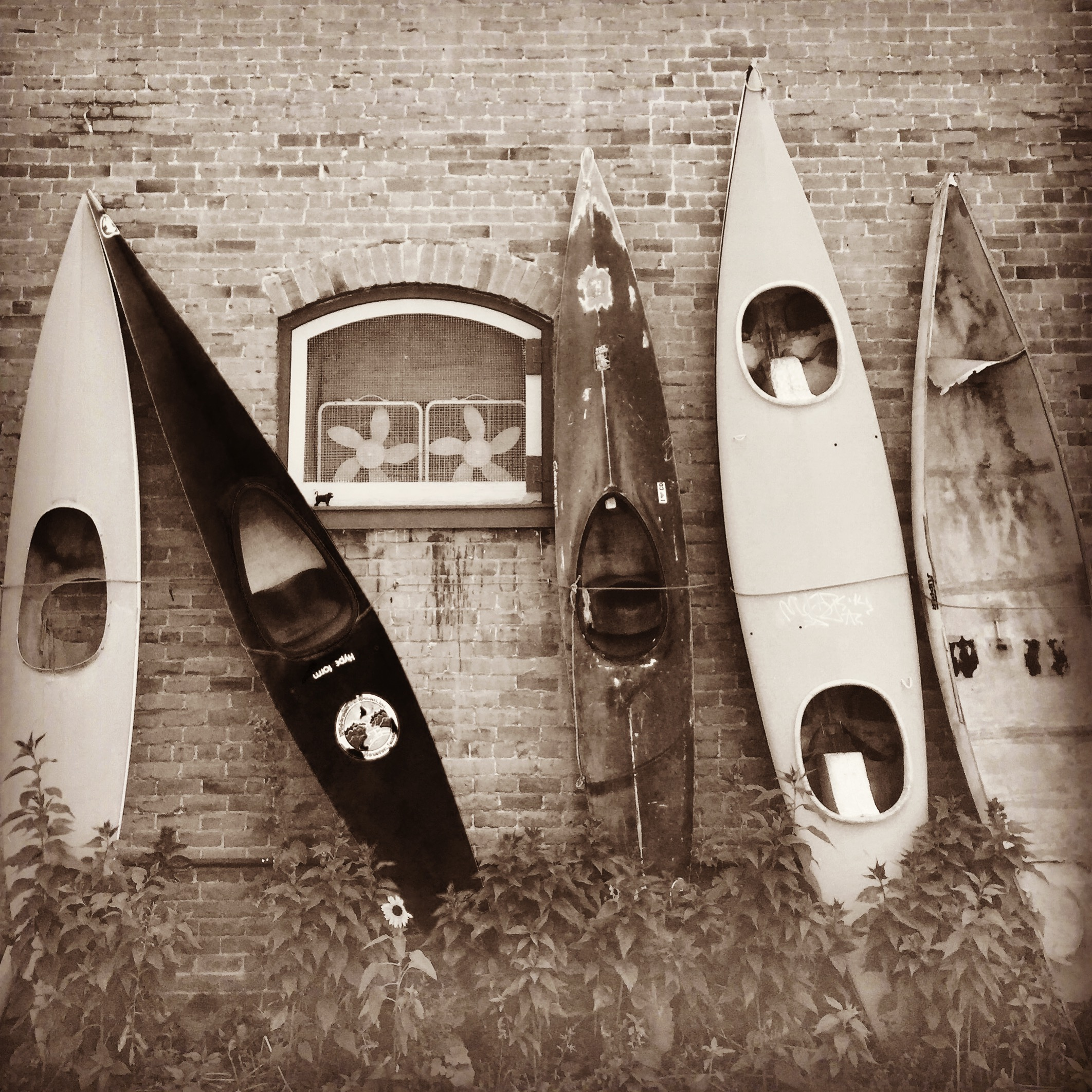 Kayaks, Salida, CO