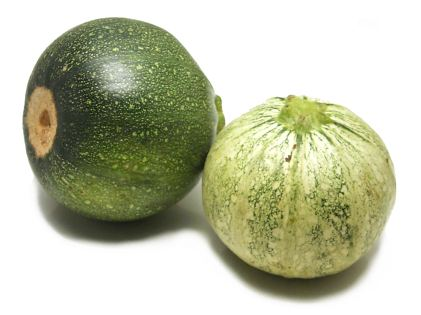 Ronde De Nice Zucchini