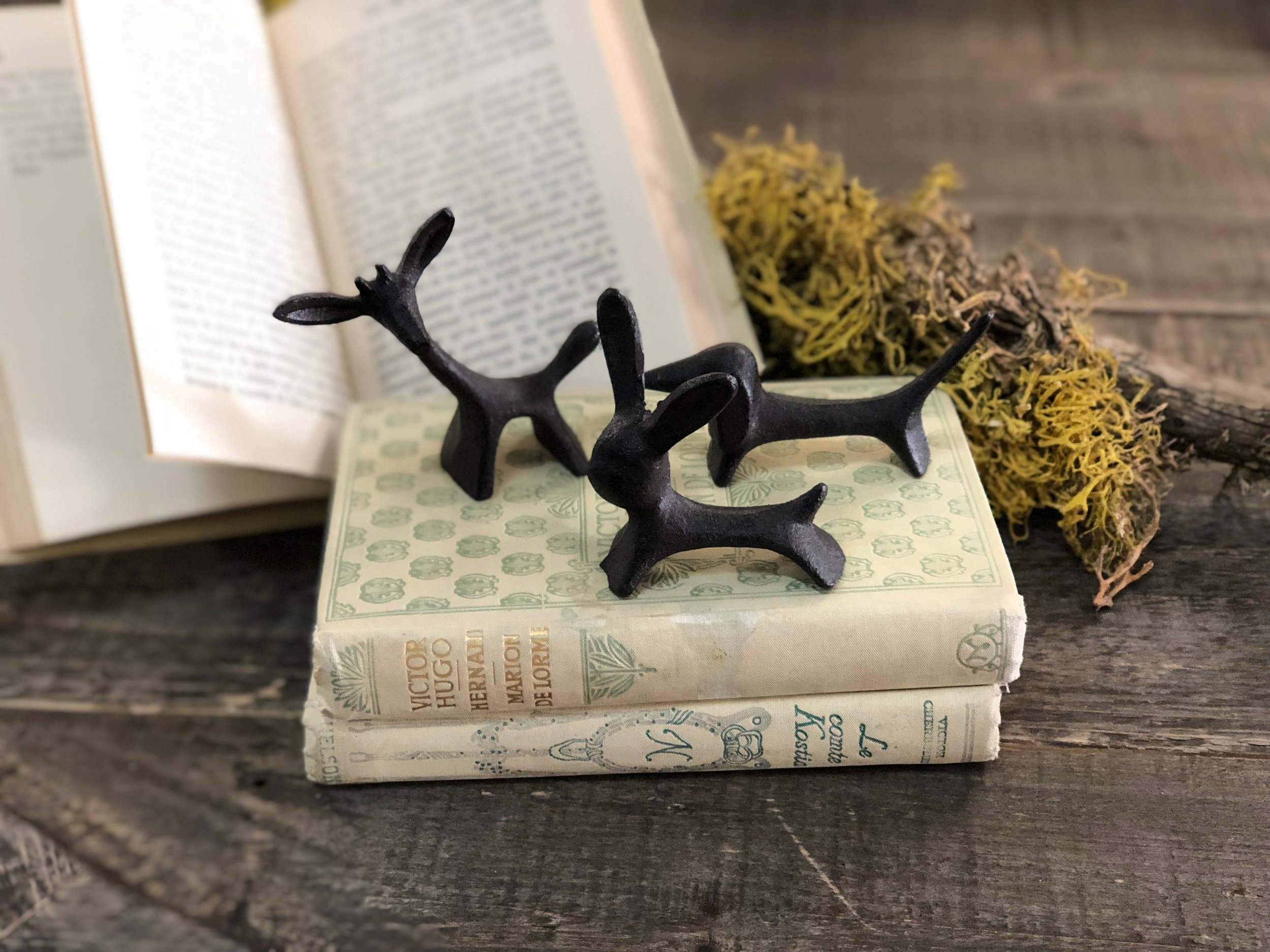Skapning Brass Creatures - A dog, a bunny and a giraffe walked into a bar… so you put them in your pocket and brought them home! Bring a bit of utilitarian whimsy to your bookshelf or table top with these wrought iron creatures. Ask them to hold your rings while you bake bread or perform open heart surgery. Adorable and dependable, just like your REAL dog, bunny and giraffe!