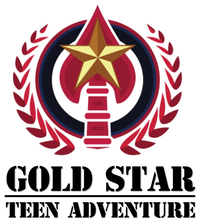 GSTA logo stacked.jpg