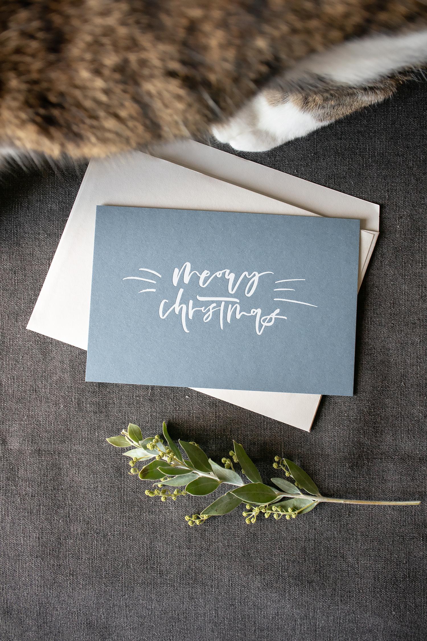 Meowy Christmas-01.jpg