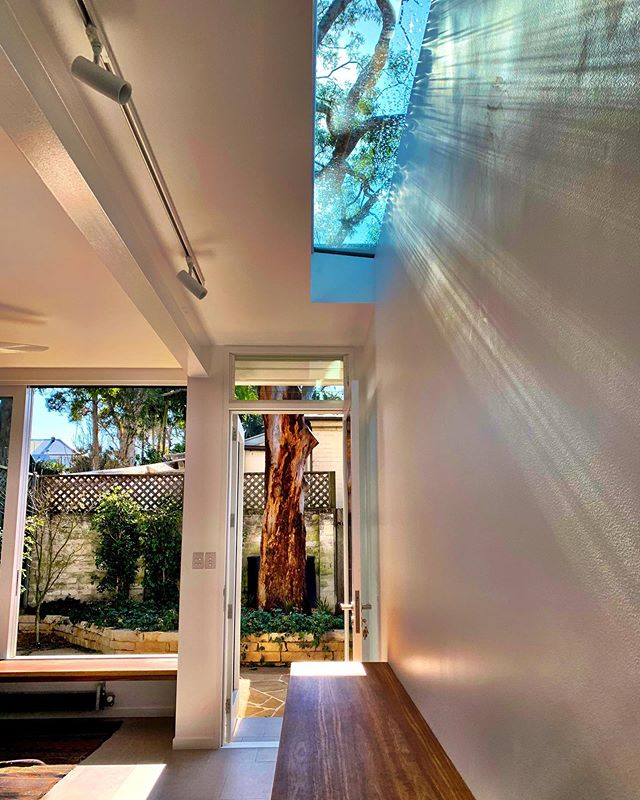 It is important to maintain a vestige of the old structure in this TWLA Balmain project. Glimpses of the original brick boundary wall are caught from the kitchen/dining room. Whilst the new build is contemporary, it maintains elegance by existing in union with the original parts of the site.  Landscape installation: @modernlandscaping  #twla #tanyawoodlandscapearchitecture #angophorahouse #landscapearchitect #landscapearchitecture #residentialarchitecture #residentiallandscapearchitecture #design #australiandesign #contemporary #construction #build #architecture #arquitectura #archidaily #architecture_hunter #nativelandscape