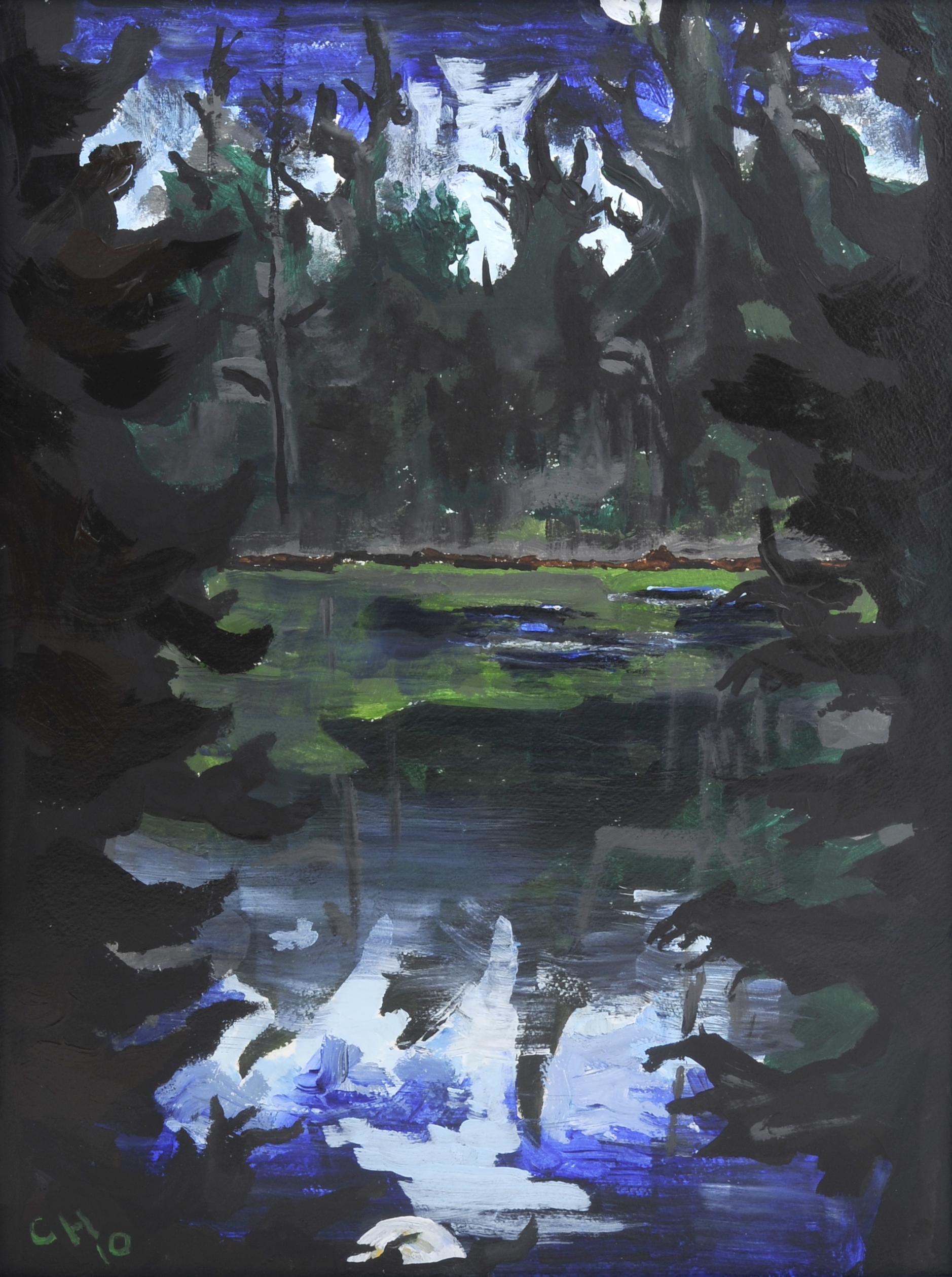 Moonlit Lake, 2010