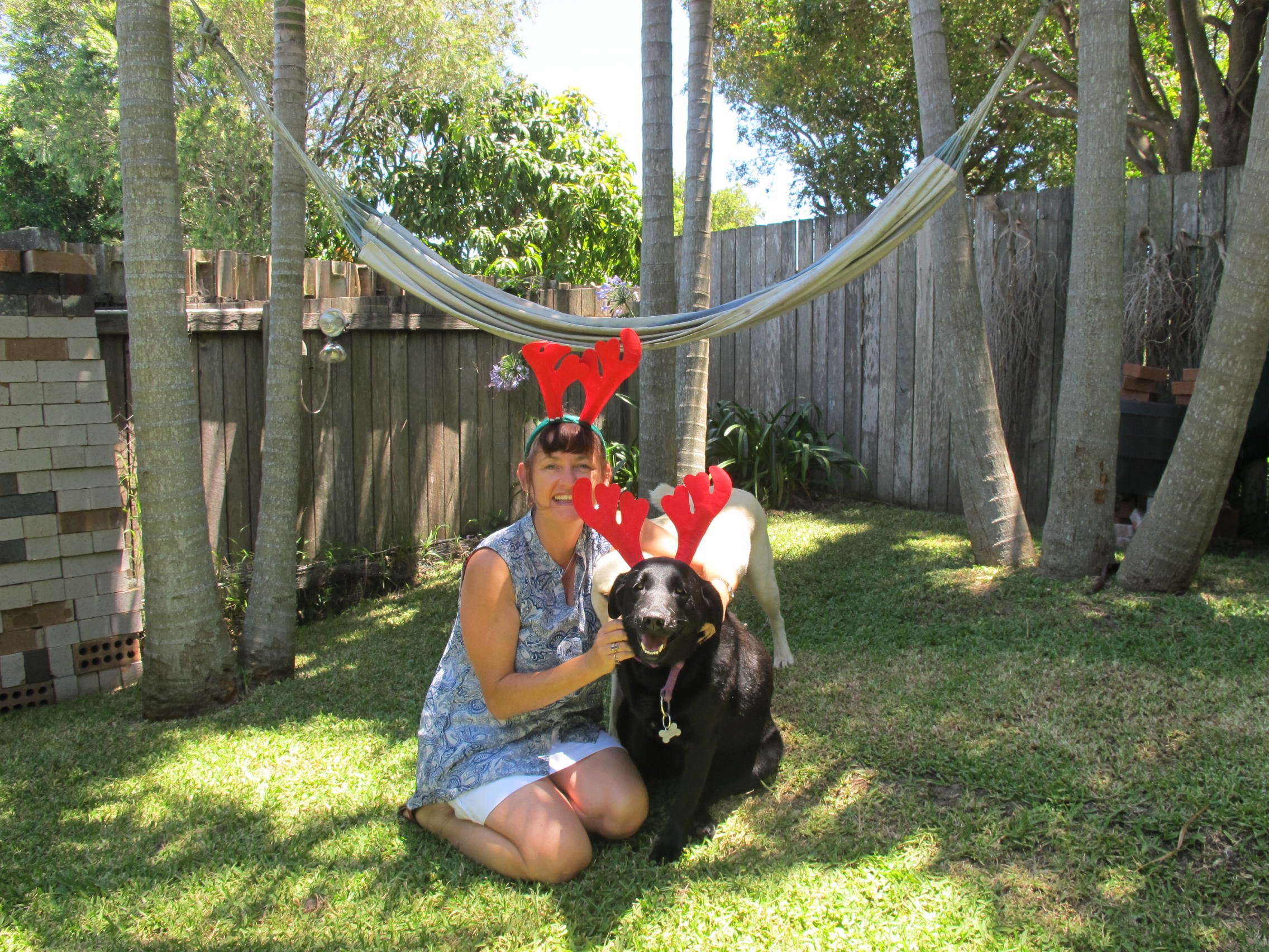 All About Pet Care_B&B & me with Raindeer.jpg