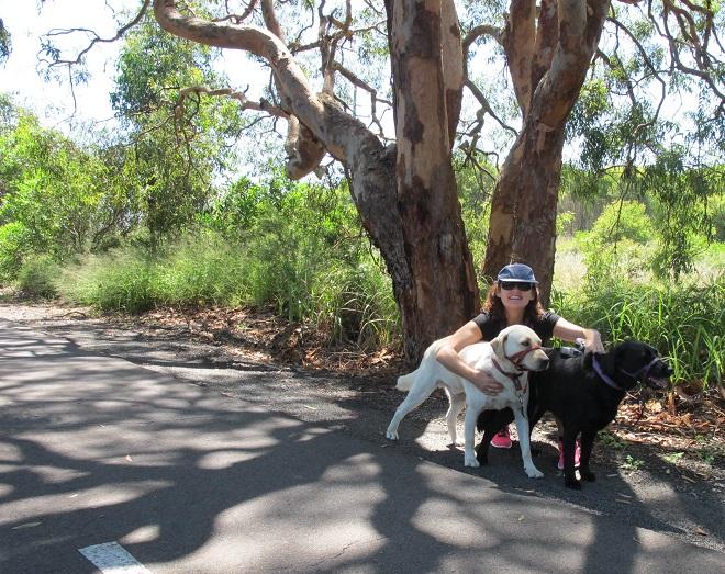 All About Pet Care_Fernleigh Track Bella & Bear.jpg