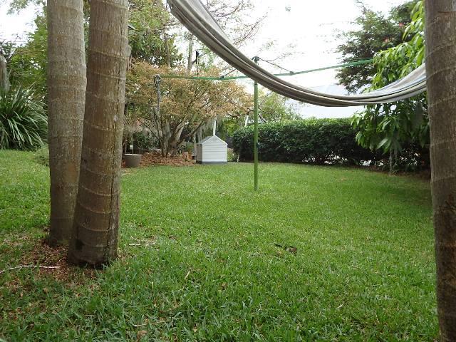 Garden & Hammock Net.JPG